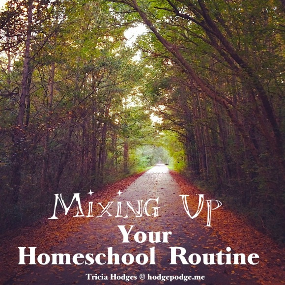 Is it time for a change? Maybe it could be as simple as just a quick walk in the woods. Time for mixing up your homeschool routine!