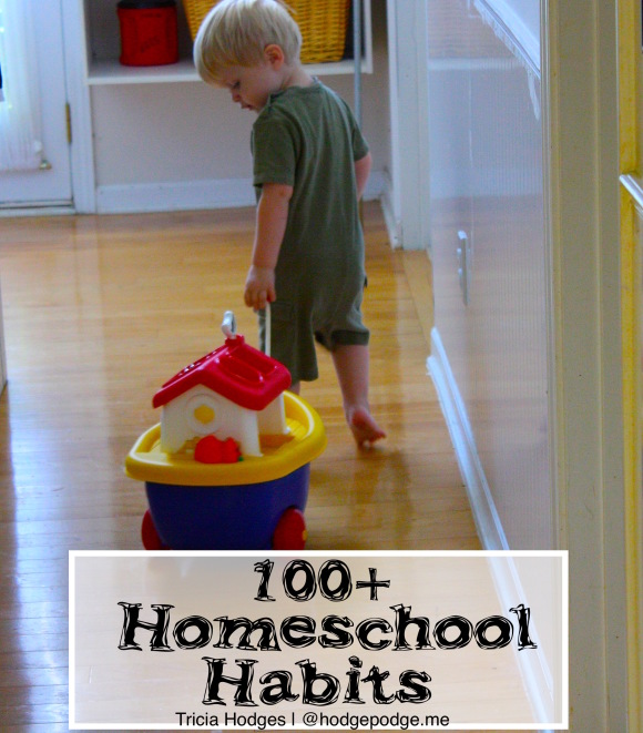 The basic routes I've discovered for seeing results. (And honestly, for keeping my sanity in that daily does of chaos!) Over 100 helpful homeschool habits.